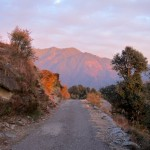 The Road to Billing, Bir